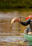 Fishing in a canoe for a pike fish. Man catching a pike fish while fishing in a canoe Royalty Free Stock Photo