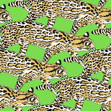 Fishing cat seamless pattern. Royalty Free Stock Photography
