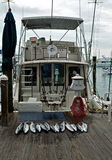 Fishing Charter, Key West Florida. Deep Sea Fishing is very popular in the Florida Keys Royalty Free Stock Photography