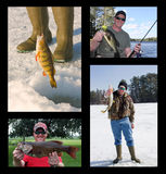 Fishing collage. With fisherman catching and holding freshwater fish Stock Images