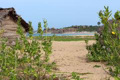 Fishing cottage surrounded by bushes near the sea Royalty Free Stock Photography