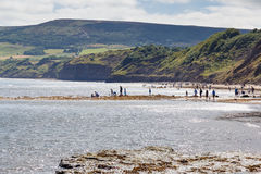 Fishing and crabbing. In Robin Hoods Bay, North Yorkshire, Royalty Free Stock Image