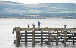 Fishing in the Cromarty Firth. Royalty Free Stock Images