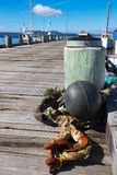 Fishing dock. In Dunalley, Tasmania royalty free stock photo