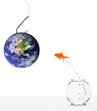 Fishing with earth as bait Royalty Free Stock Photos