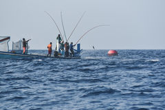 Fishing from FAD. Traditional pole and line tuna fishing in the Maldives is one of the most sustainable fishing practices in the world royalty free stock photos