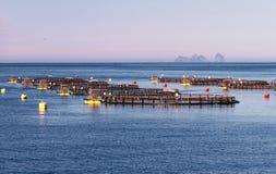 Fishing farm Royalty Free Stock Photo