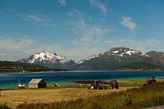 Fishing and farming in Lofoten Stock Images