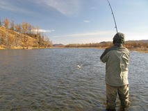 Fishing - fight with fish. Fishermans fight with fish in wild river Royalty Free Stock Photography