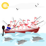Fishing flamingos Royalty Free Stock Images