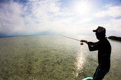 Fishing the flats of Belize Stock Images