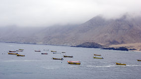 Fishing fleet Stock Image