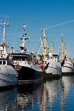 Fishing fleet. In a harbour stock photos