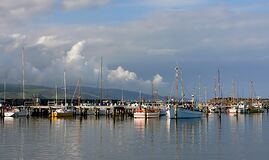Fishing Fleet Apollo Bay Royalty Free Stock Photos