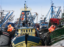 Fishing Fleet, Essaouira Morocco Royalty Free Stock Image