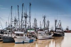 Fishing fleet on Fraser river in Steveston, Canada royalty free stock images