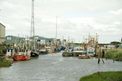 Fishing fleet Royalty Free Stock Images