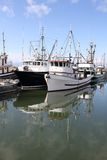 Fishing Fleet Reflection Royalty Free Stock Photo