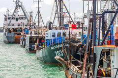 Fishing fleet rests in port. Fishing boats rest in port of Auckland, New Zealand Royalty Free Stock Photos