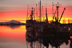 Fishing Fleet Sunrise, Steveston. Dawn at the marina in Steveston Harbor, British Columbia, Canada where the commercial fishing fleet waits for the fishing Royalty Free Stock Photography