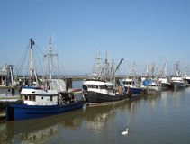 Fishing Fleet Waits Royalty Free Stock Photos