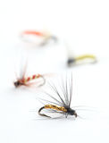 Fishing flies Stock Photos
