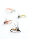 Fishing flies Stock Photos