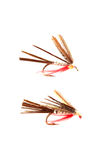Fishing flies Stock Image