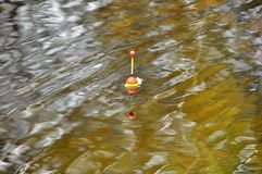 Fishing float floating in the river royalty free stock photography