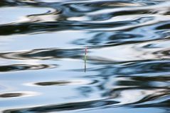 Fishing float in water surface Royalty Free Stock Image