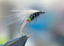 Fishing Fly Hook royalty free stock photos