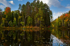 Fishing on the forest lake in autumn Stock Image