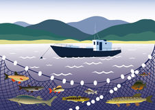 Fishing for freshwater fish. Summer landscape with river, seiner, freshwater fish and networks Stock Images