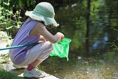 Fishing frog Stock Image