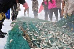 Fishing on a frozen lake Stock Image