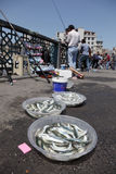 Fishing from the Galata Bridge Stock Photography
