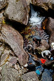 Fishing. A group of local people are fishing in the rock surrounded stream of seven sister waterfalls at north Sikkim, India Stock Photo