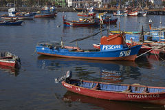 Fishing Harbour in Antofagasta, Chile Stock Images