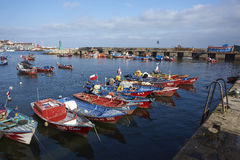 Fishing Harbour in Antofagasta, Chile Royalty Free Stock Photos