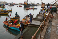 Fishing Harbour Royalty Free Stock Images