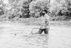 Fishing hobby. Bearded brutal fisher catching trout fish with net. Fishing is an astonishing accessible recreational