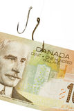 Fishing Hook and Canadian Dollar Stock Image