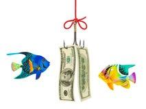 Fishing hook and money. Isolated on white background Royalty Free Stock Photos