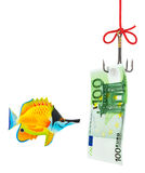 Fishing hook and money Stock Photos