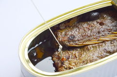 Fishing hook and net catch salt fried fish in tin canned on white background Royalty Free Stock Photography