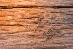 Fishing hook on wood background Royalty Free Stock Images