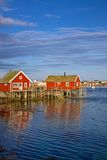 Fishing huts on Lofoten Stock Image