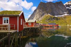 Fishing huts with sod roof. Typical red rorbu fishing huts with sod roof on Lofoten islands in Norway reflecting in fjord royalty free stock photos