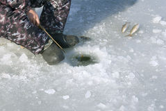 Fishing on ice Stock Photography
