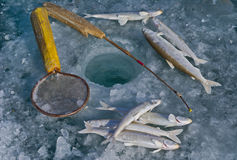 Fishing on ice 4 Stock Photos